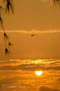 Copter at sunset